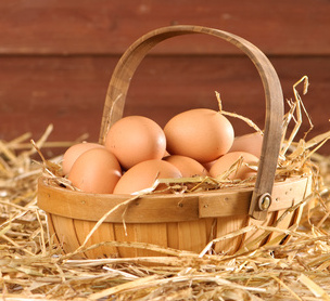 Fresh eggs from your coop